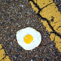 Egg on a road
